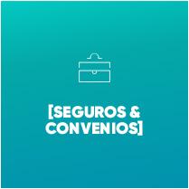 SEGUROS Y CONVENIOS